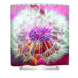 Sparkle Shower Curtain by Barbara McDevitt