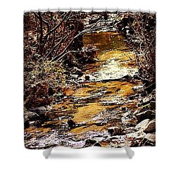 Shower Curtain featuring the photograph Sparkling Creek by Tara Potts