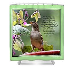Sparrow Inspiration From The Book Of Luke Shower Curtain