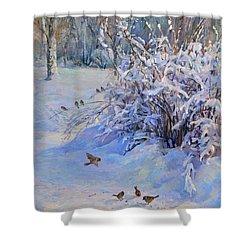 Sparrow On Snow Shower Curtain