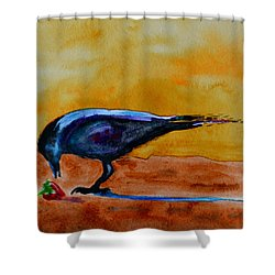 Special Treat Shower Curtain by Beverley Harper Tinsley
