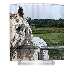 Shower Curtain featuring the photograph Speck At The Gate by Lesa Fine