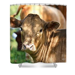 Speckled Shade Shower Curtain