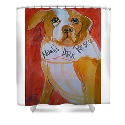 Spencer The Pit Bull Shower Curtain
