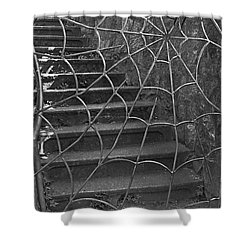 Shower Curtain featuring the photograph Spider And Web Iron Gate Art Prints by Valerie Garner