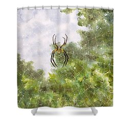 Spider In Web #2 Shower Curtain
