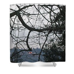 Spider Tree Shower Curtain