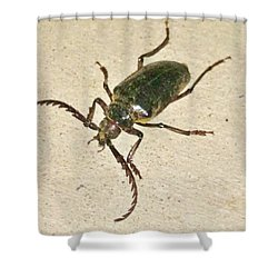 Shower Curtain featuring the photograph Spike by Angela J Wright