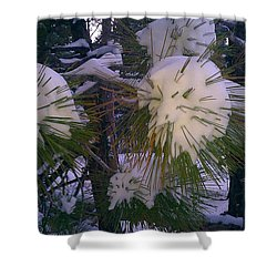 Spiny Snow Balls Shower Curtain
