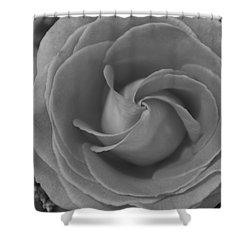Spiral Rose Bw Shower Curtain