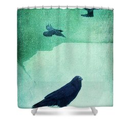Spirit Bird Shower Curtain by Priska Wettstein