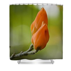 Spirit Of Spring Shower Curtain by Sonali Gangane