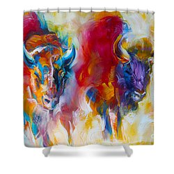 Spirit Quest Shower Curtain