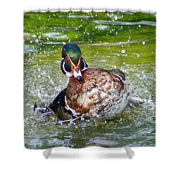 Splashdown - Wood Duck Shower Curtain