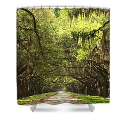 Splendid Oak Drive Shower Curtain