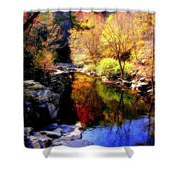 Splendor Of Autumn Shower Curtain by Karen Wiles