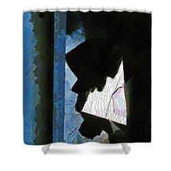Splintered  Shower Curtain by Steve Taylor