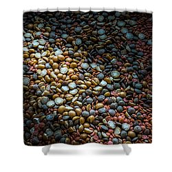 Split Pea Abstract Shower Curtain by Bob Orsillo