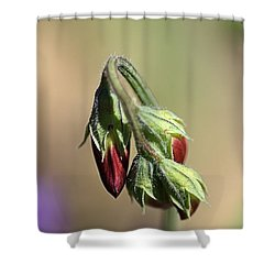 Shower Curtain featuring the photograph Split Pea by Joy Watson
