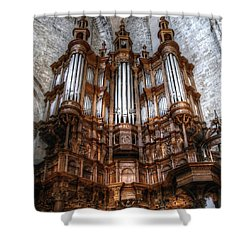 Spooky Organ Shower Curtain