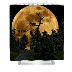 Spooky Road Shower Curtain