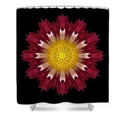 Spoon Chrysanthemum I Flower Mandala Shower Curtain by David J Bookbinder