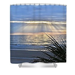 Light Of The Way Shower Curtain