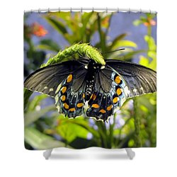 Spotted Beauty Shower Curtain