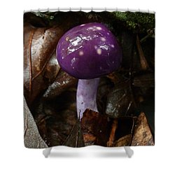 Spotted Cortinarius Mushroom Shower Curtain