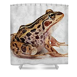 Spotted Dart Frog Shower Curtain by Lanjee Chee