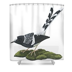 Spotted Forktail Shower Curtain by Anonymous
