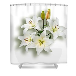 Spray Of White Lilies Shower Curtain by Jane McIlroy