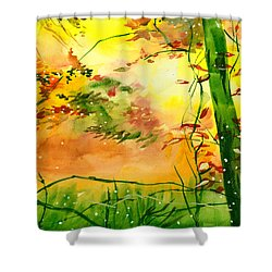 Spring 1 Shower Curtain by Anil Nene
