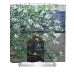 Spring At Grace Church Shower Curtain