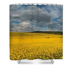 Spring At Oilseed Rape Field Shower Curtain