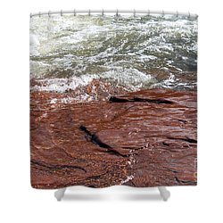 Spring At Sedona In Spring Shower Curtain by Debbie Hart