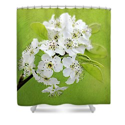 Spring Blooms Shower Curtain by Darren Fisher