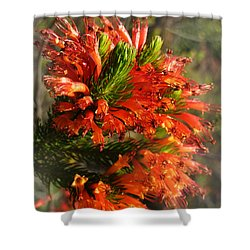 Spring Blossom 11 Shower Curtain by Xueling Zou