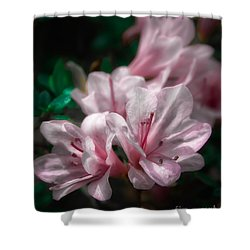 Spring Blossoms #2 Shower Curtain