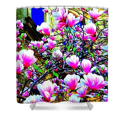 Spring Blossoms Shower Curtain by Ed Weidman