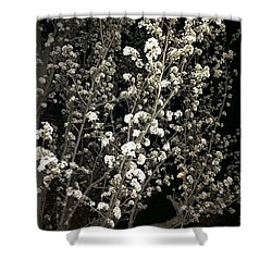 Spring Blossoms Glowing Shower Curtain