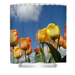 Spring Blue Sky White Clouds Orange Tulip Flowers Shower Curtain by Baslee Troutman