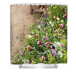 Spring Border Shower Curtain by Anne Gilbert