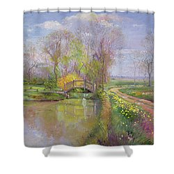 Spring Bridge Shower Curtain by Timothy  Easton