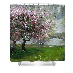 Spring By The River Shower Curtain by Ylli Haruni
