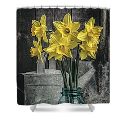 Spring Daffodil Flowers Shower Curtain by Edward Fielding