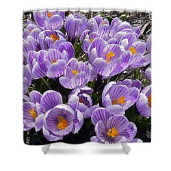 Spring Faces Shower Curtain