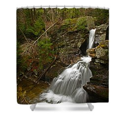 Spring Falls Shower Curtain by Karol Livote