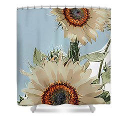 Spring Fantasy Shower Curtain
