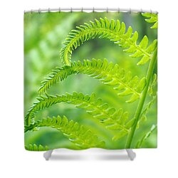 Spring Fern Shower Curtain